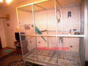 клетка для попугая ара