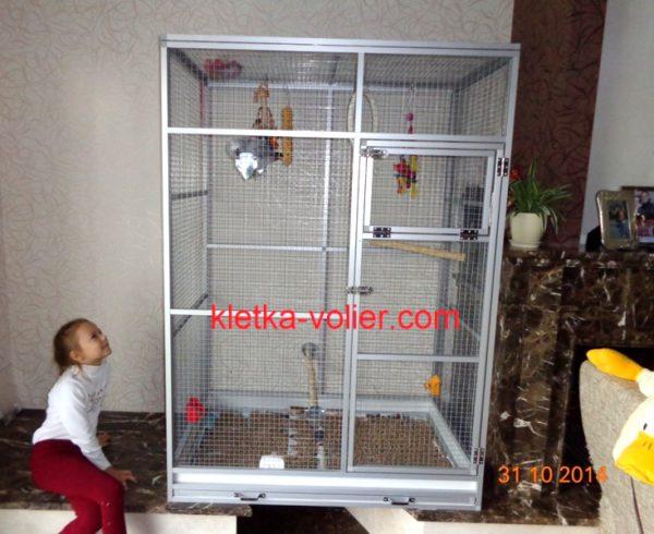 Жако в клетке