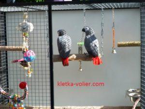 клетку для попугая