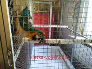 вольер для 3х попугаев ар